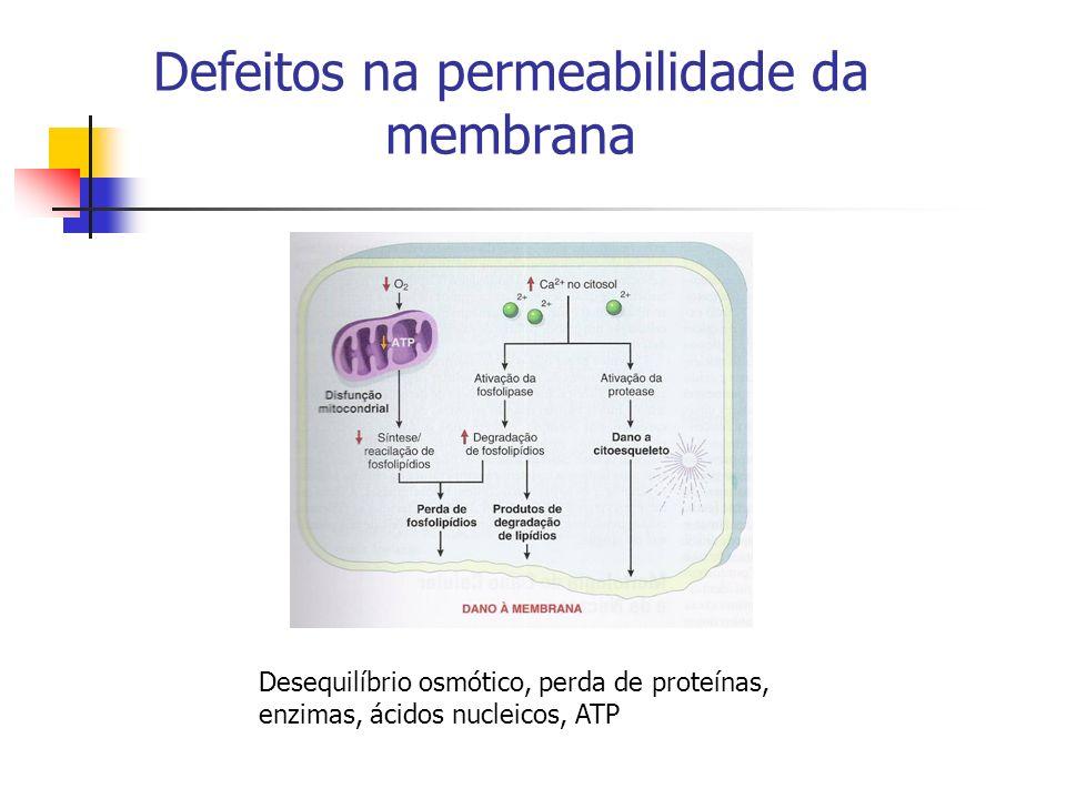Defeitos na permeabilidade da membrana