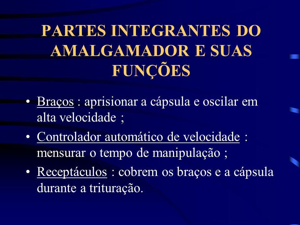 PARTES INTEGRANTES DO AMALGAMADOR E SUAS FUNÇÕES