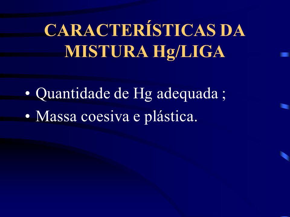 CARACTERÍSTICAS DA MISTURA Hg/LIGA