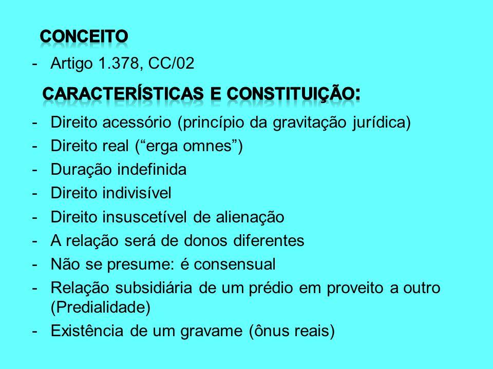 Características e constituição: