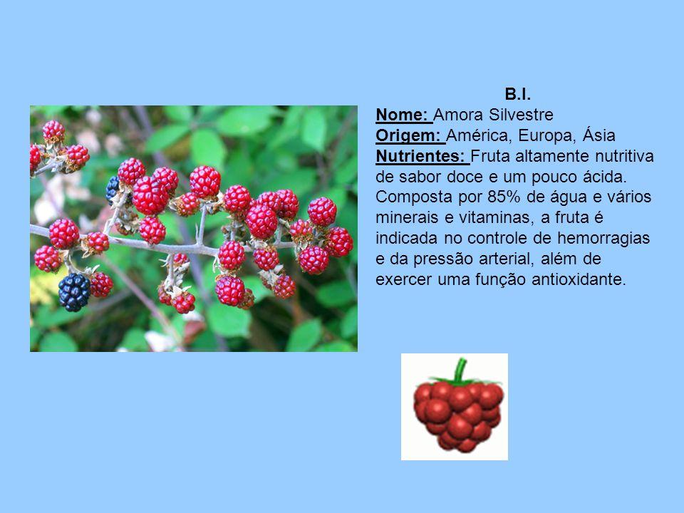 B.I.Nome: Amora Silvestre. Origem: América, Europa, Ásia.