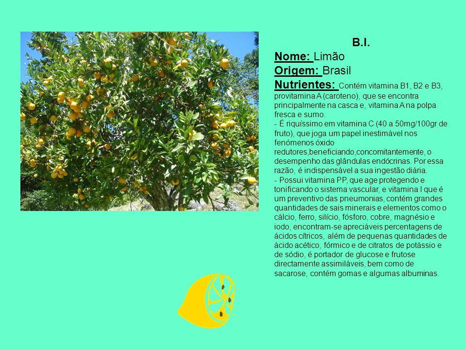B.I. Nome: Limão Origem: Brasil
