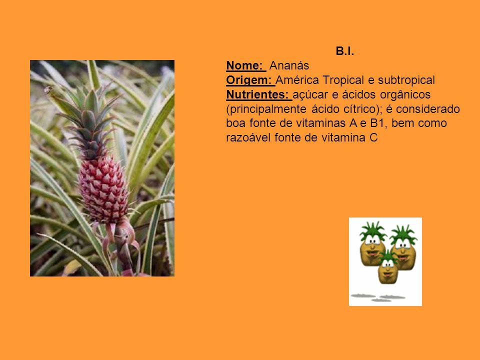 B.I. Nome: Ananás. Origem: América Tropical e subtropical.