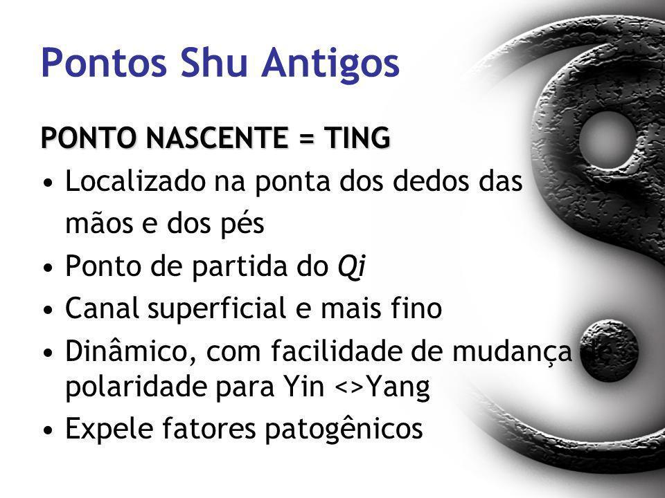 Pontos Shu Antigos PONTO NASCENTE = TING