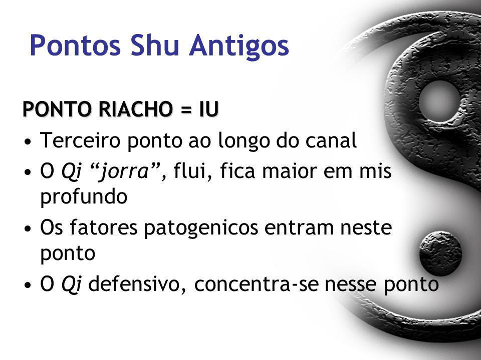 Pontos Shu Antigos PONTO RIACHO = IU Terceiro ponto ao longo do canal