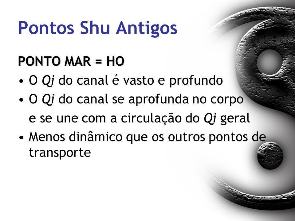 Pontos Shu Antigos PONTO MAR = HO O Qi do canal é vasto e profundo