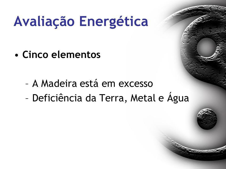 Avaliação Energética Cinco elementos A Madeira está em excesso