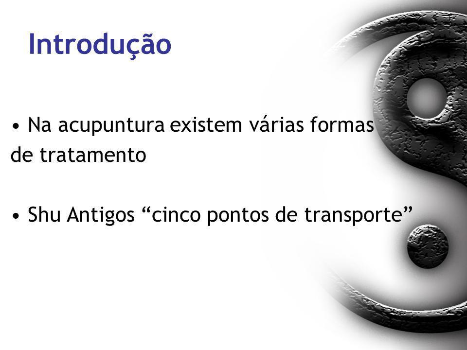 Introdução Na acupuntura existem várias formas de tratamento