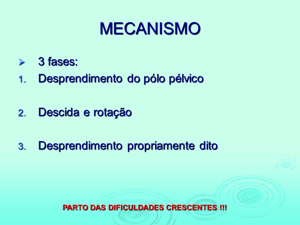 MECANISMO 3 fases: Desprendimento do pólo pélvico Descida e rotação