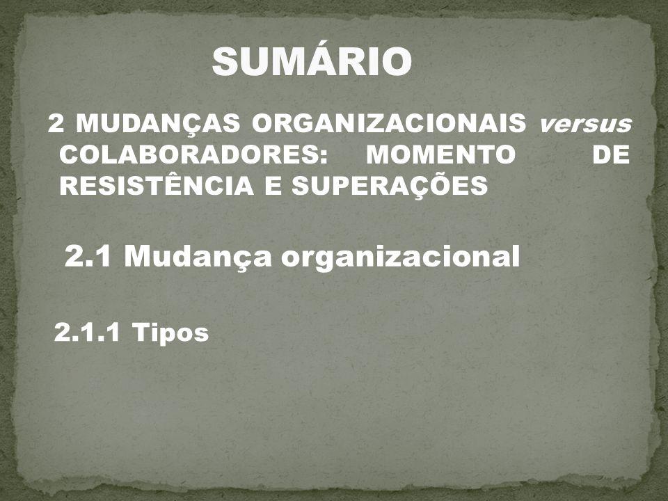 SUMÁRIO 2.1 Mudança organizacional