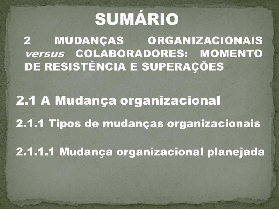 SUMÁRIO 2.1 A Mudança organizacional