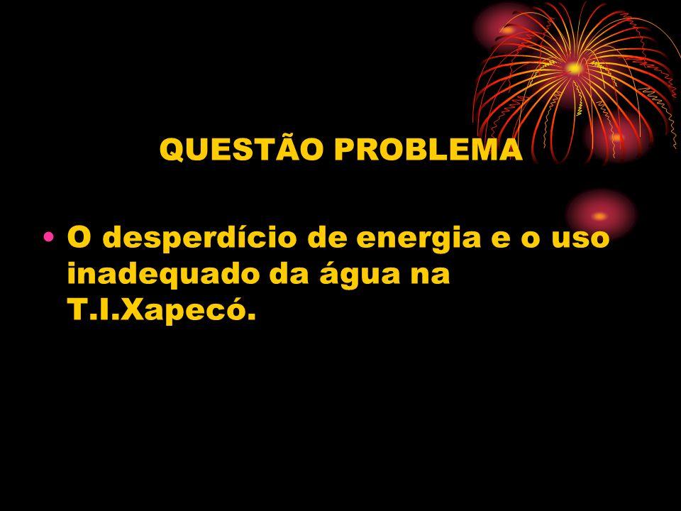 QUESTÃO PROBLEMA O desperdício de energia e o uso inadequado da água na T.I.Xapecó.