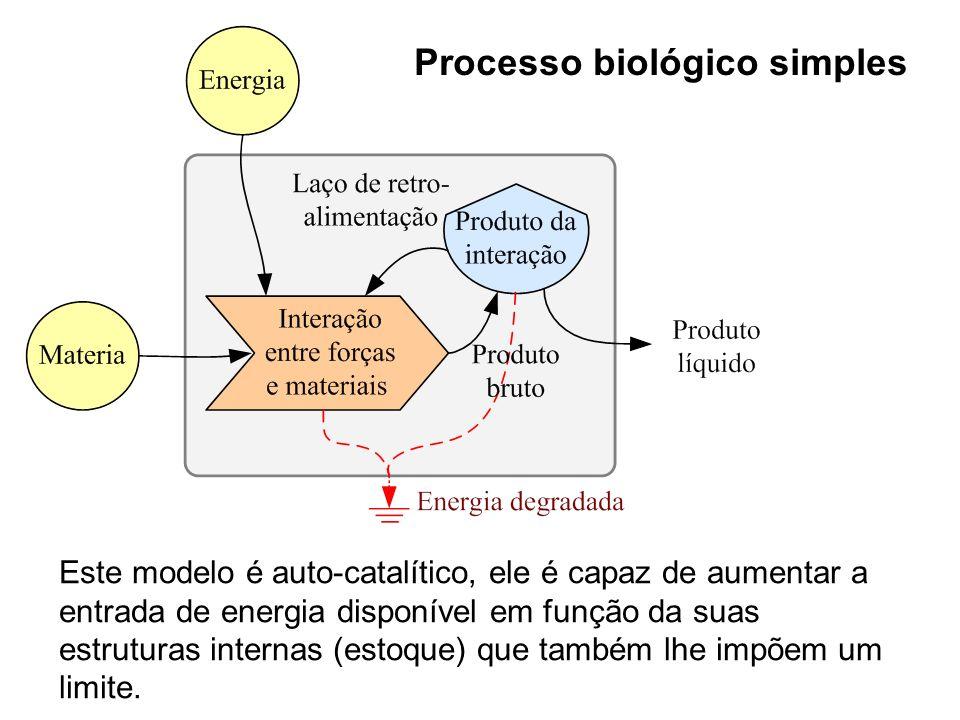 Processo biológico simples