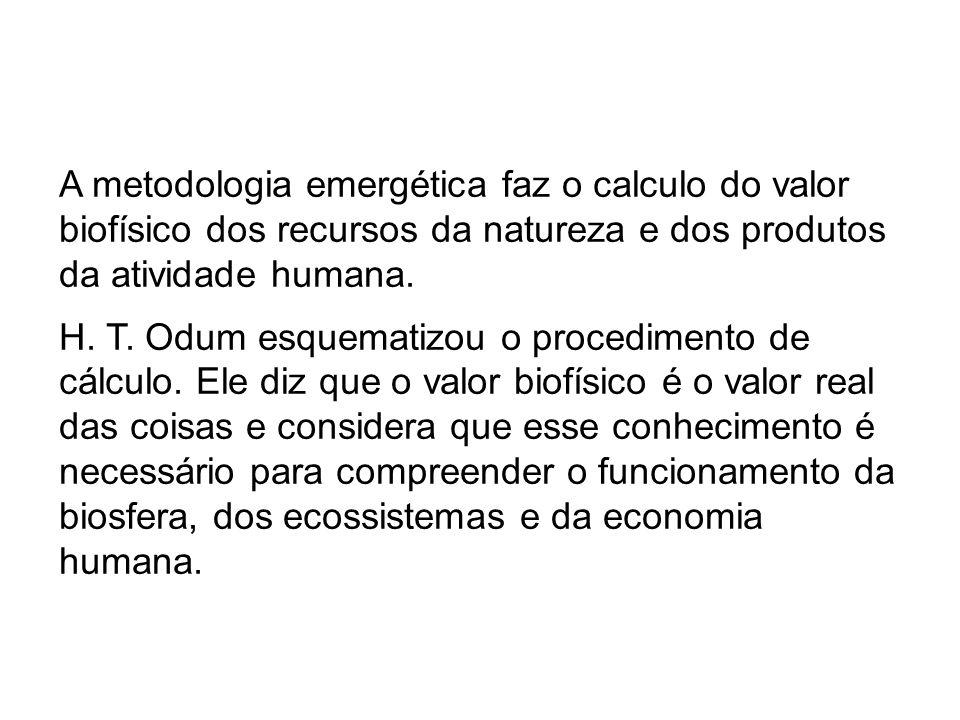 A metodologia emergética faz o calculo do valor biofísico dos recursos da natureza e dos produtos da atividade humana.