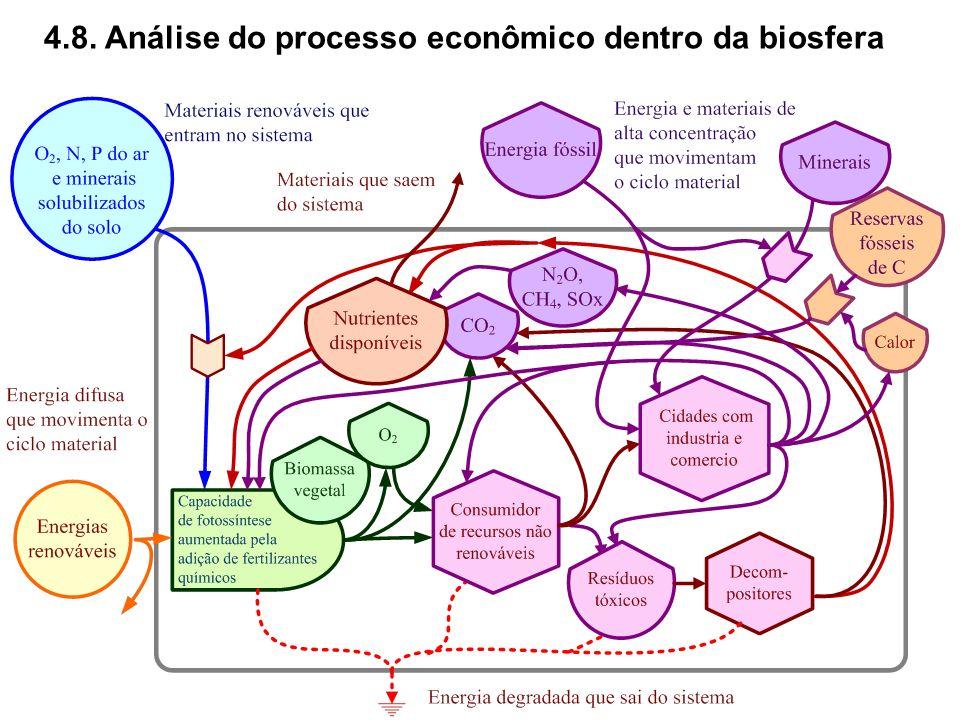 4.8. Análise do processo econômico dentro da biosfera
