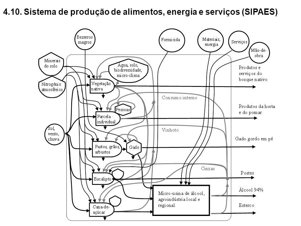4.10. Sistema de produção de alimentos, energia e serviços (SIPAES)