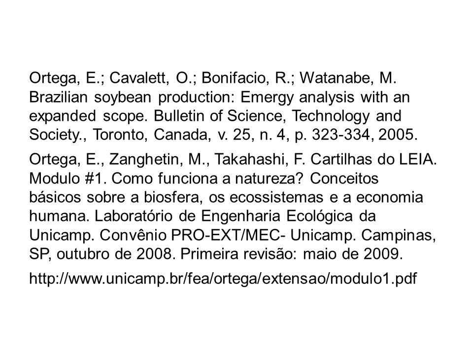 Ortega, E. ; Cavalett, O. ; Bonifacio, R. ; Watanabe, M