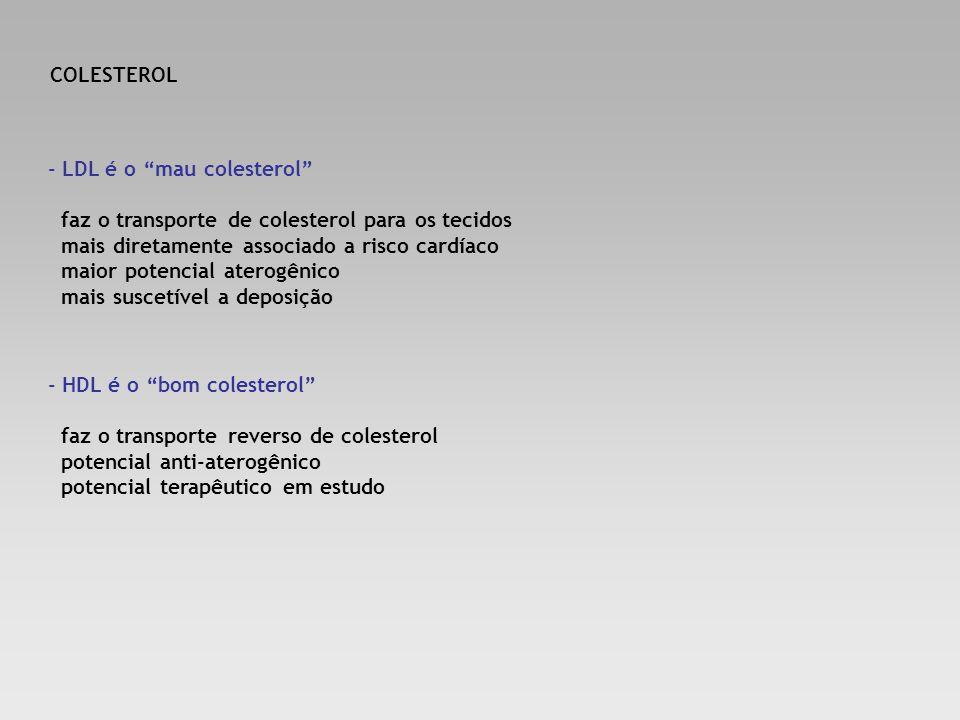 COLESTEROL - LDL é o mau colesterol faz o transporte de colesterol para os tecidos. mais diretamente associado a risco cardíaco.