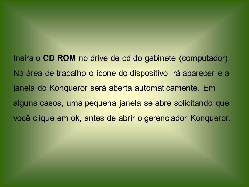 Insira o CD ROM no drive de cd do gabinete (computador)