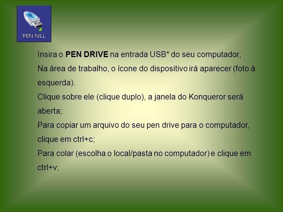 Insira o PEN DRIVE na entrada USB* do seu computador;