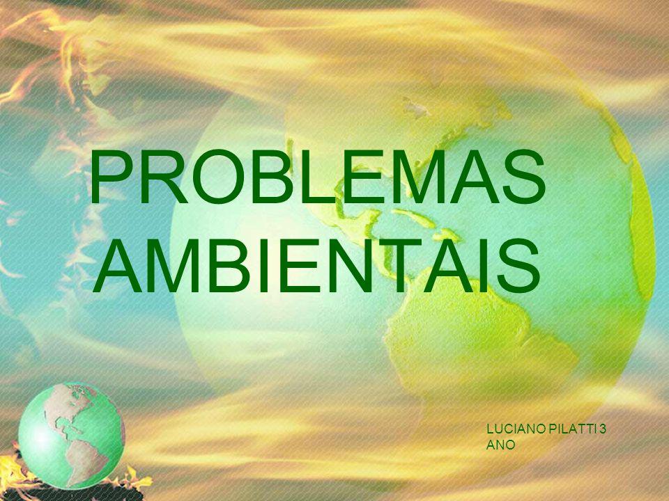 PROBLEMAS AMBIENTAIS LUCIANO PILATTI 3 ANO