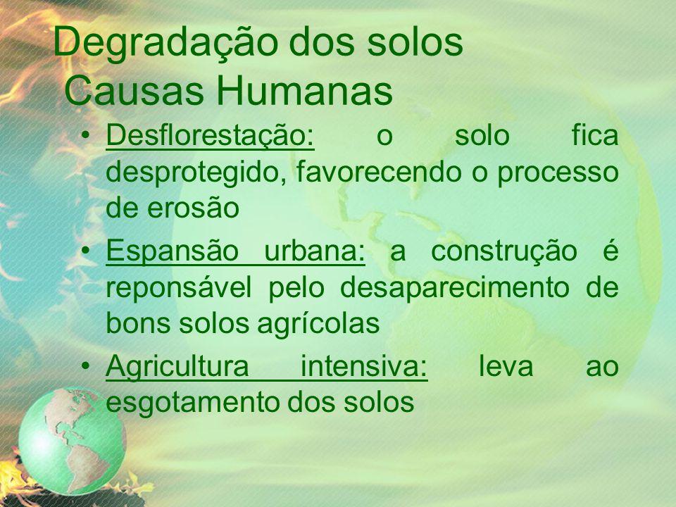 Degradação dos solos Causas Humanas