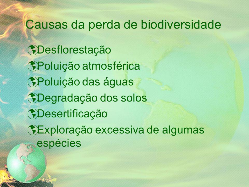 Causas da perda de biodiversidade