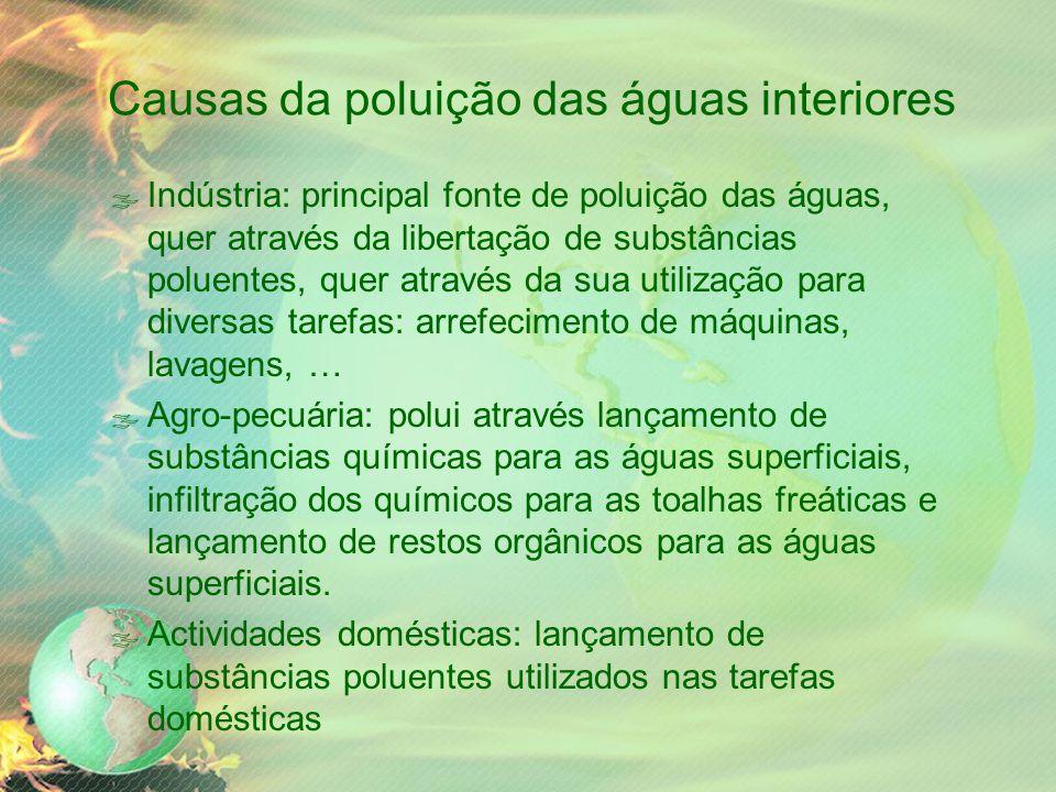 Causas da poluição das águas interiores