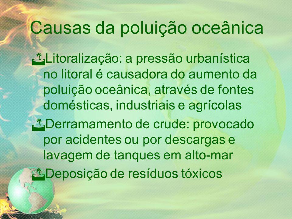 Causas da poluição oceânica