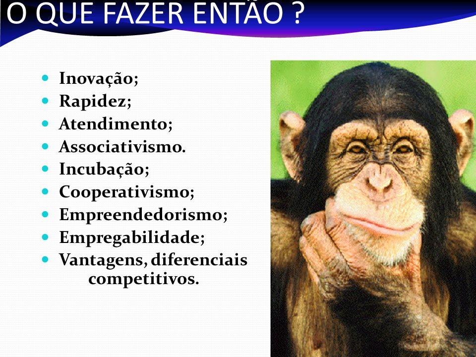 O QUE FAZER ENTÃO Inovação; Rapidez; Atendimento; Associativismo.