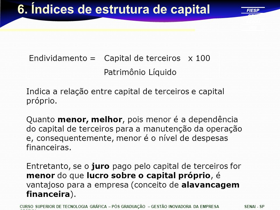 6. Índices de estrutura de capital