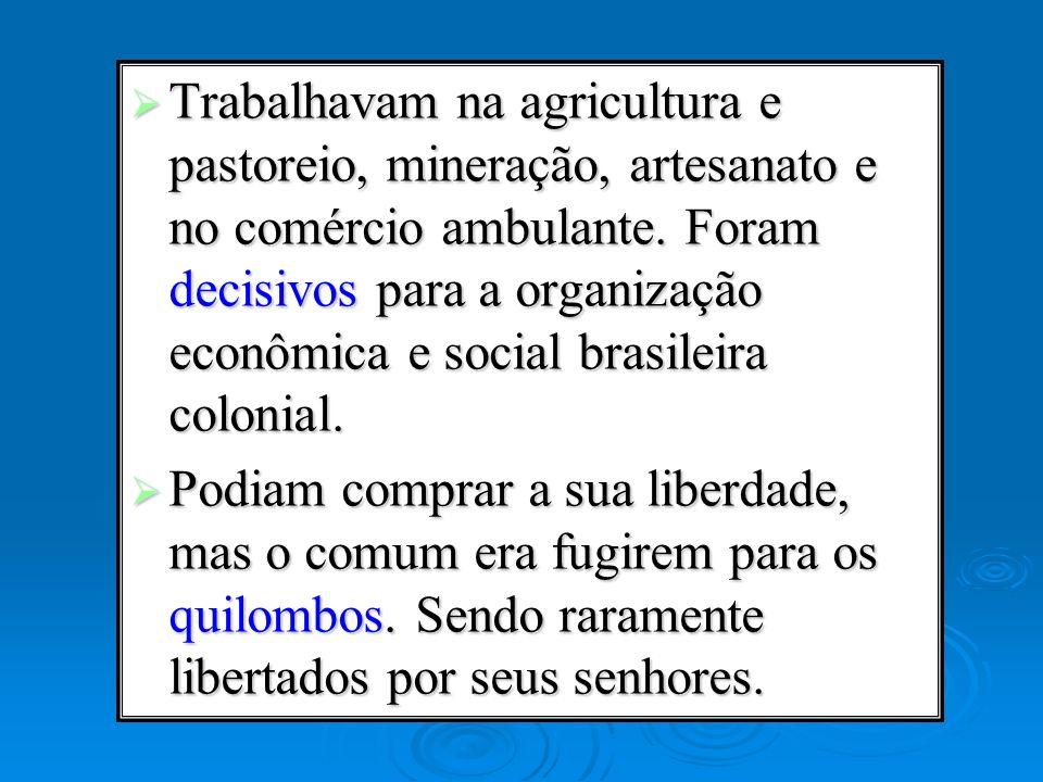 Trabalhavam na agricultura e pastoreio, mineração, artesanato e no comércio ambulante. Foram decisivos para a organização econômica e social brasileira colonial.