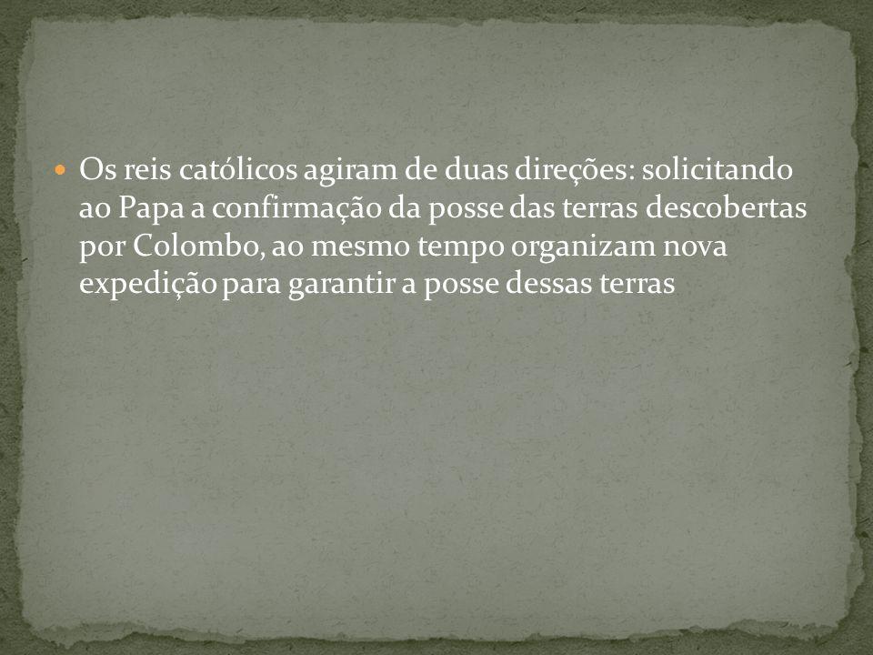 Os reis católicos agiram de duas direções: solicitando ao Papa a confirmação da posse das terras descobertas por Colombo, ao mesmo tempo organizam nova expedição para garantir a posse dessas terras