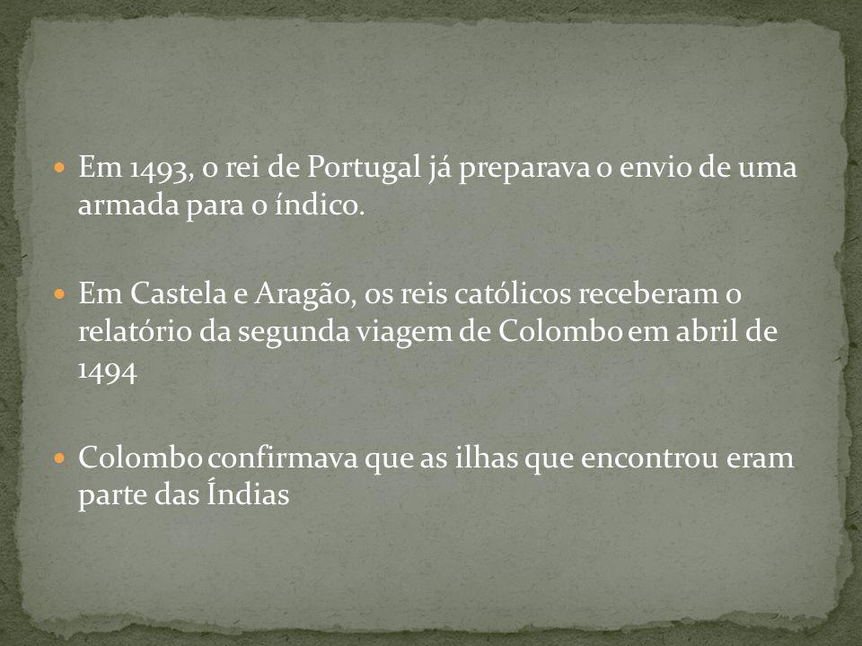 Em 1493, o rei de Portugal já preparava o envio de uma armada para o índico.