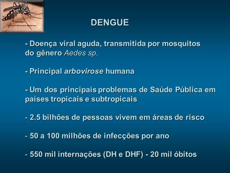 DENGUE - Doença viral aguda, transmitida por mosquitos