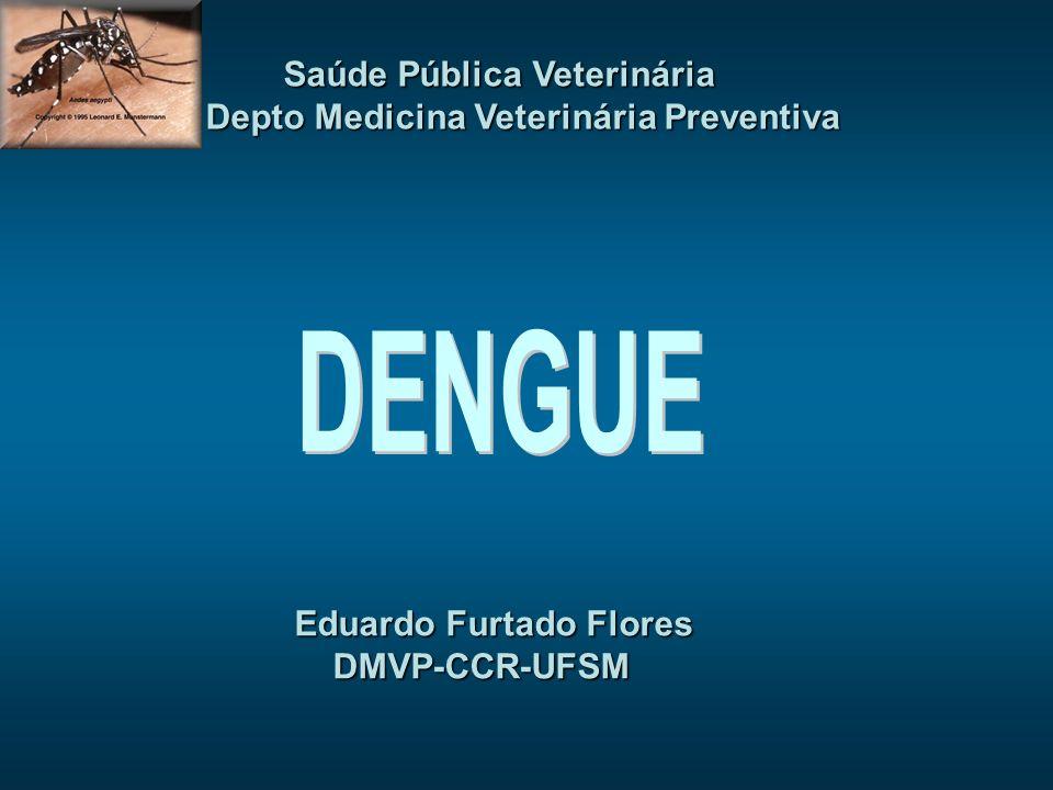 DENGUE Saúde Pública Veterinária Depto Medicina Veterinária Preventiva