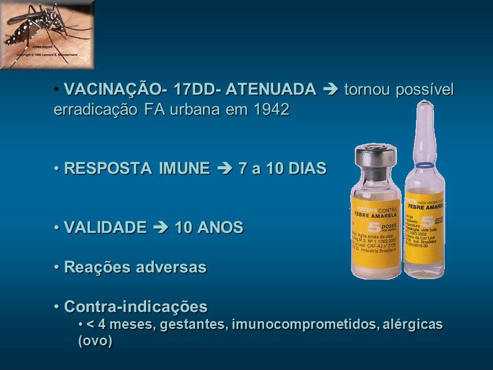 VACINAÇÃO- 17DD- ATENUADA  tornou possível erradicação FA urbana em 1942