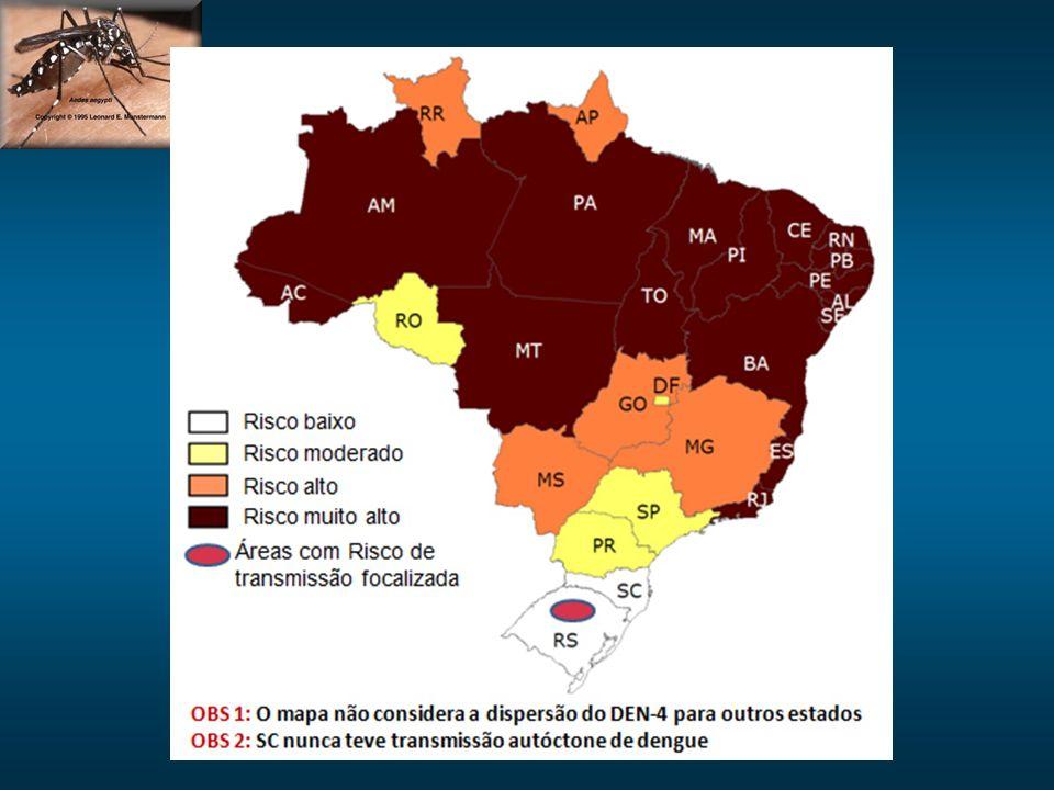 A ocorrencia de epidemias esta relacionada, principalmente, com introdução de novo sorotipo em áreas onde não circulava antes ou mudança de tipo de vírus predominante na região.