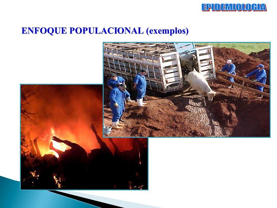 EPIDEMIOLOGIA ENFOQUE POPULACIONAL (exemplos)