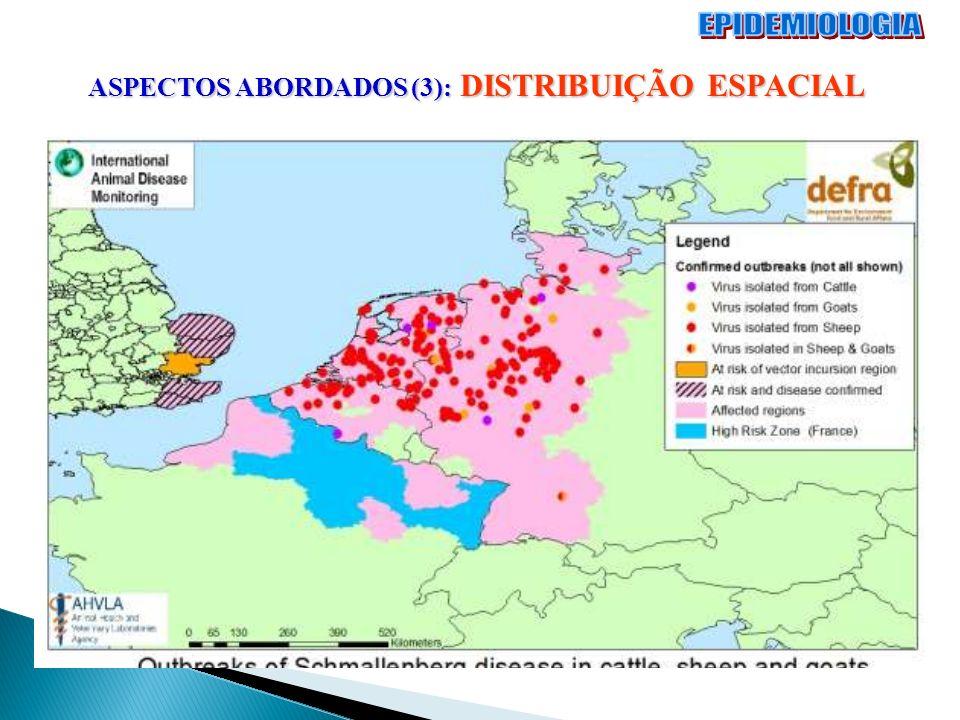 EPIDEMIOLOGIA ASPECTOS ABORDADOS (3): DISTRIBUIÇÃO ESPACIAL