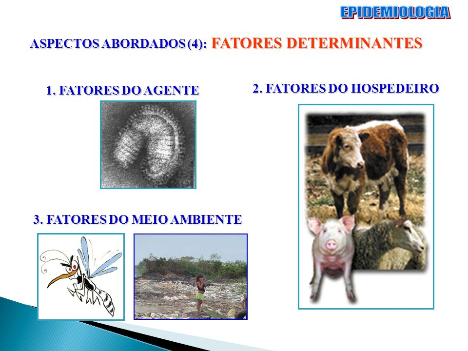 EPIDEMIOLOGIA ASPECTOS ABORDADOS (4): FATORES DETERMINANTES