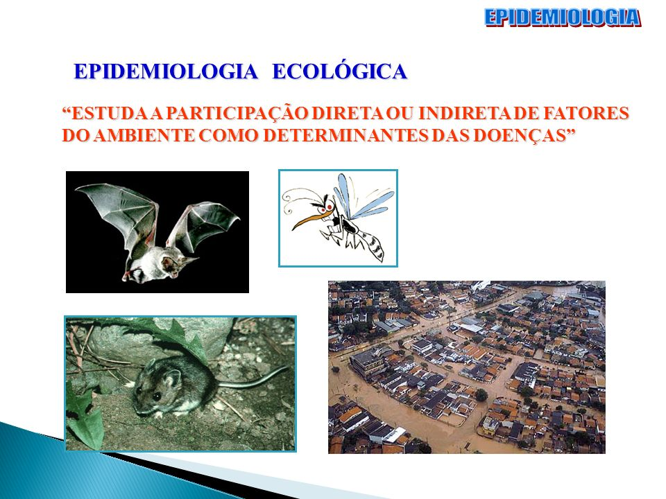 EPIDEMIOLOGIA EPIDEMIOLOGIA ECOLÓGICA