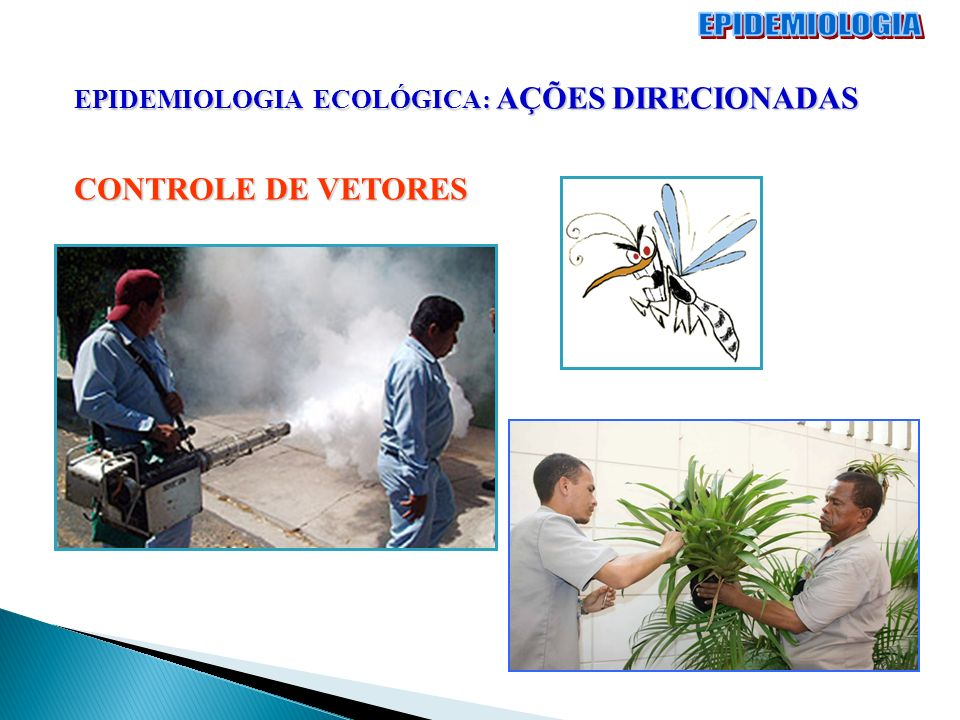 EPIDEMIOLOGIA CONTROLE DE VETORES