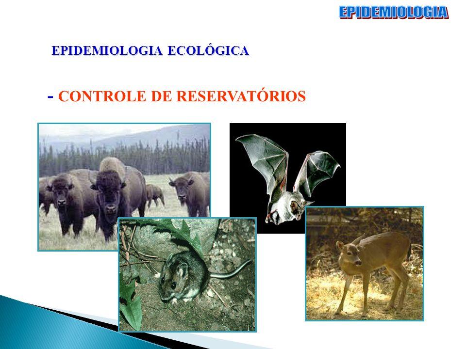 EPIDEMIOLOGIA EPIDEMIOLOGIA ECOLÓGICA - CONTROLE DE RESERVATÓRIOS