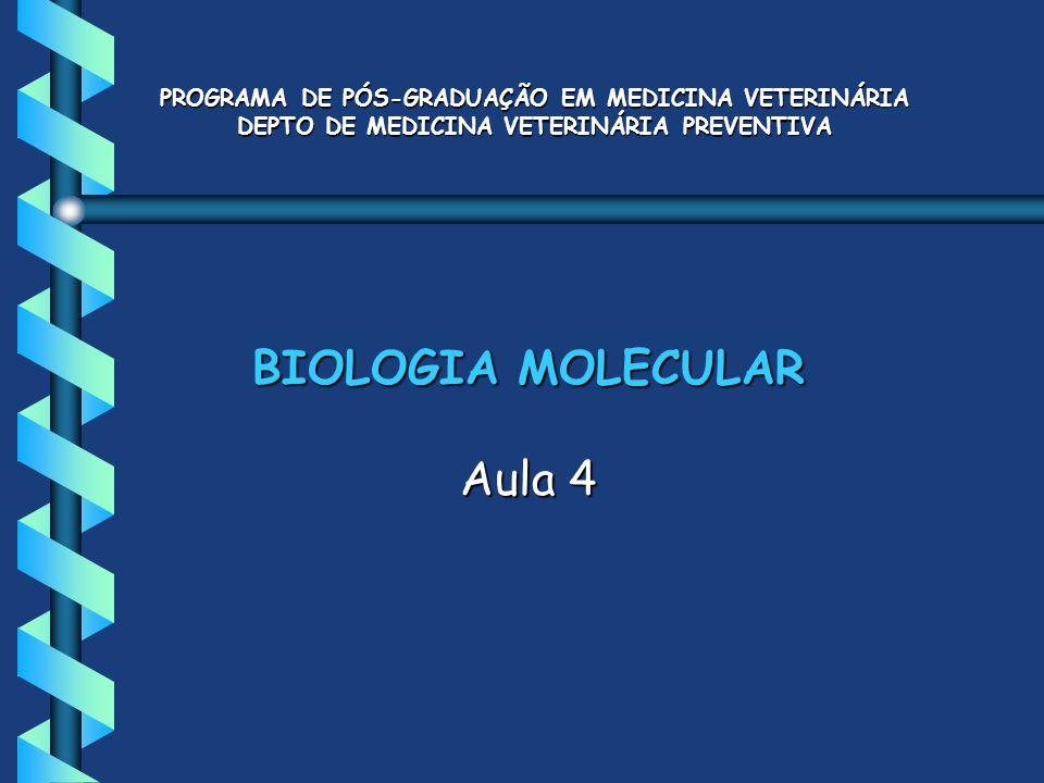 BIOLOGIA MOLECULAR Aula 4