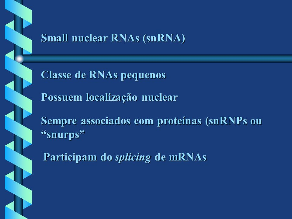 Small nuclear RNAs (snRNA)