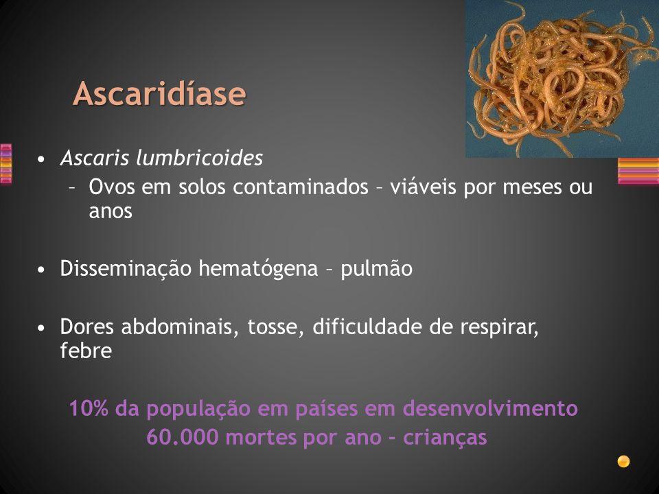 Ascaridíase Ascaris lumbricoides