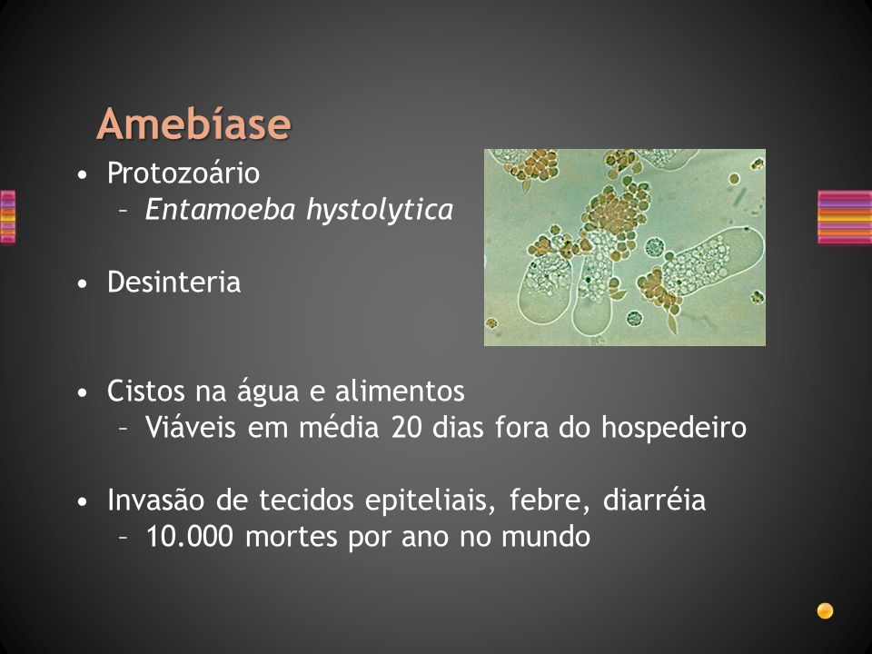 Amebíase Protozoário Entamoeba hystolytica Desinteria