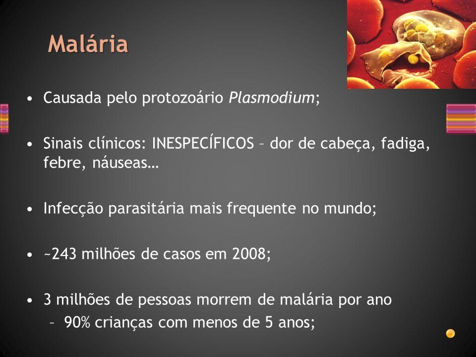 Malária Causada pelo protozoário Plasmodium;
