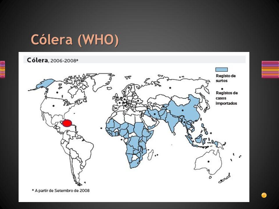 Cólera (WHO)